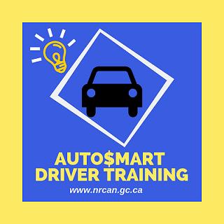 Autosmart driver training